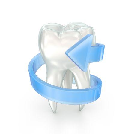 Schaubild eines Zahn mit seiner Wurzel